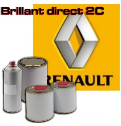 Peinture Renault brillant direct en pot ou en spray