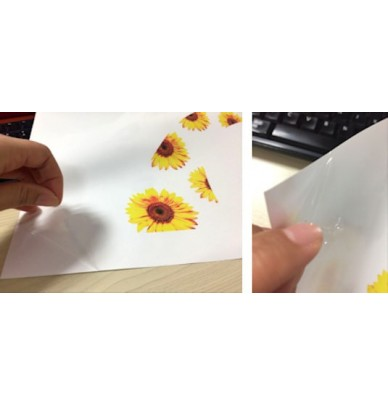 Film de transfert hydrodipping vierge à imprimer 21cm ou 30cm