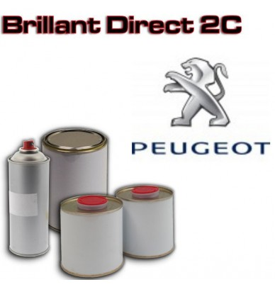 Peinture PEUGEOT Brillant direct en pot ou aérosol