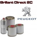Brillant direct en pot ou aérosol pour autos PEUGEOT