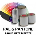 More about Teintes RAL ou PANTONE® en version laque mate polyuréthane