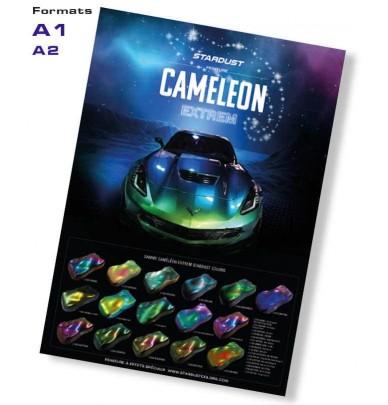 Poster Caméléon Extrem