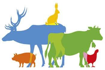1% reservé à la defense des animaux
